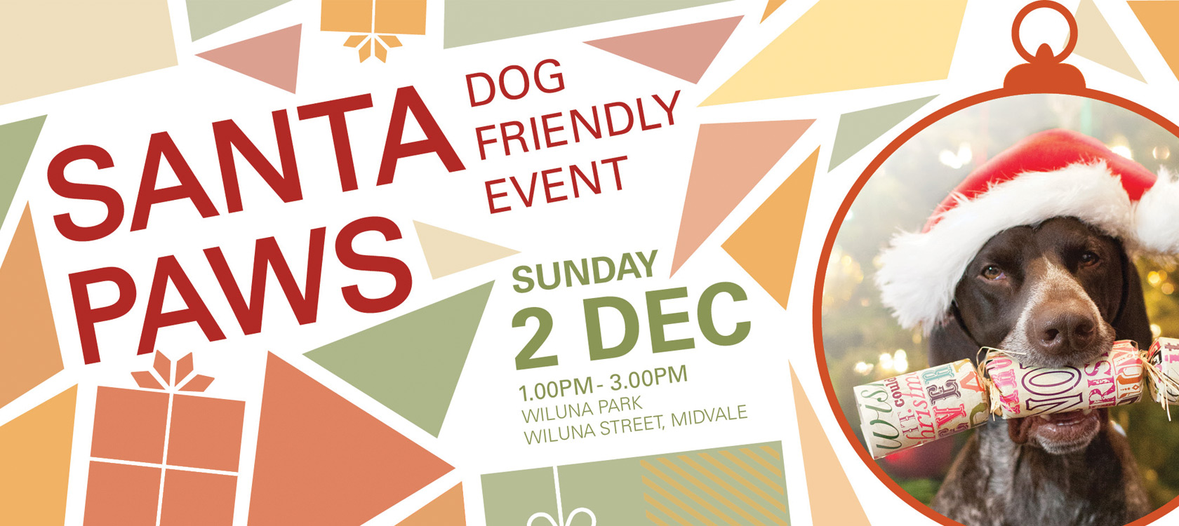 movida estate santa paws christmas event
