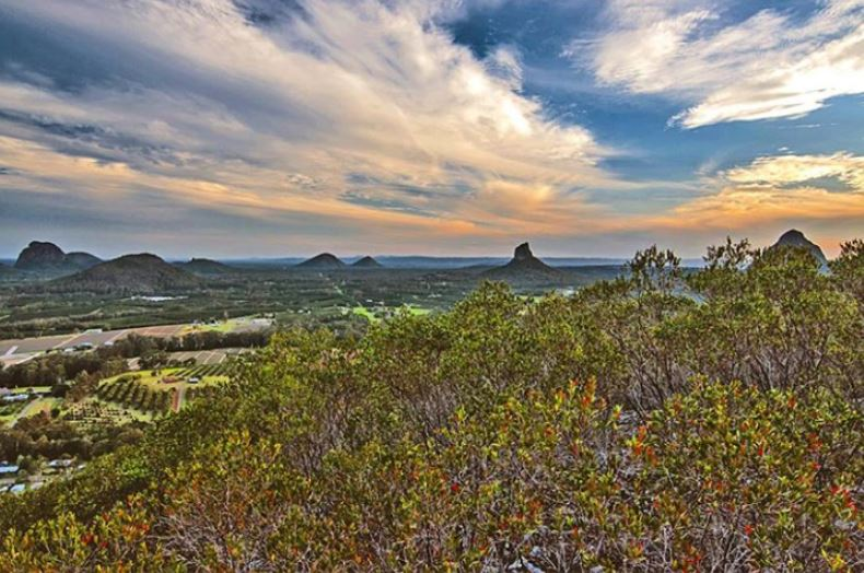 Glass House Mountains near Riverbank