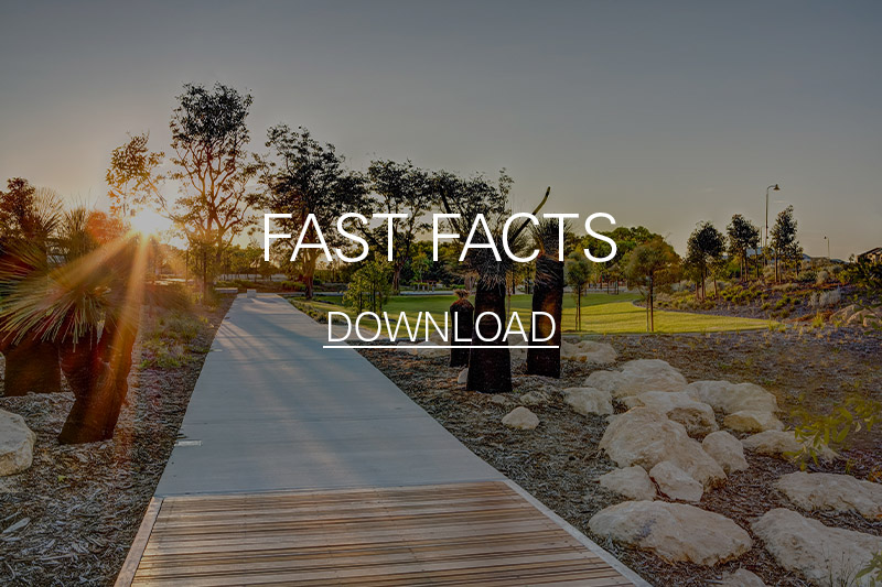 YGE fast facts link