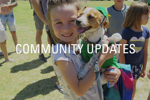 Golden Bay Community Updates and Events