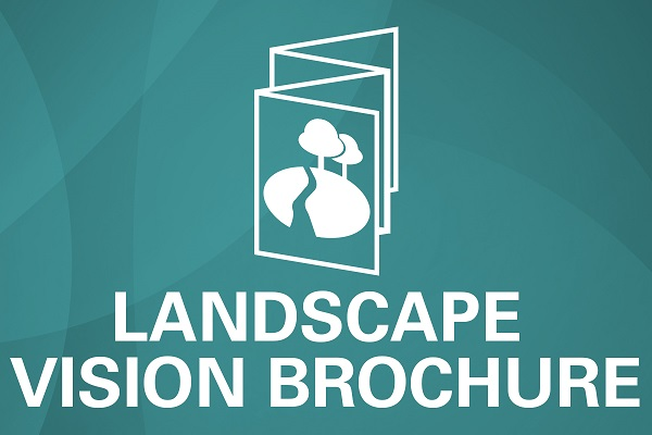 Landscape vision brochure icon lakelands