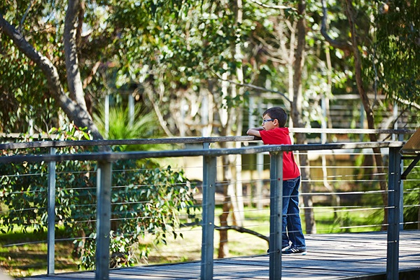 child on viewing boardwalk yanchep national park